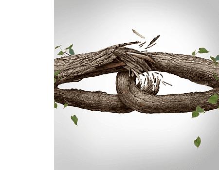 treelinks70white